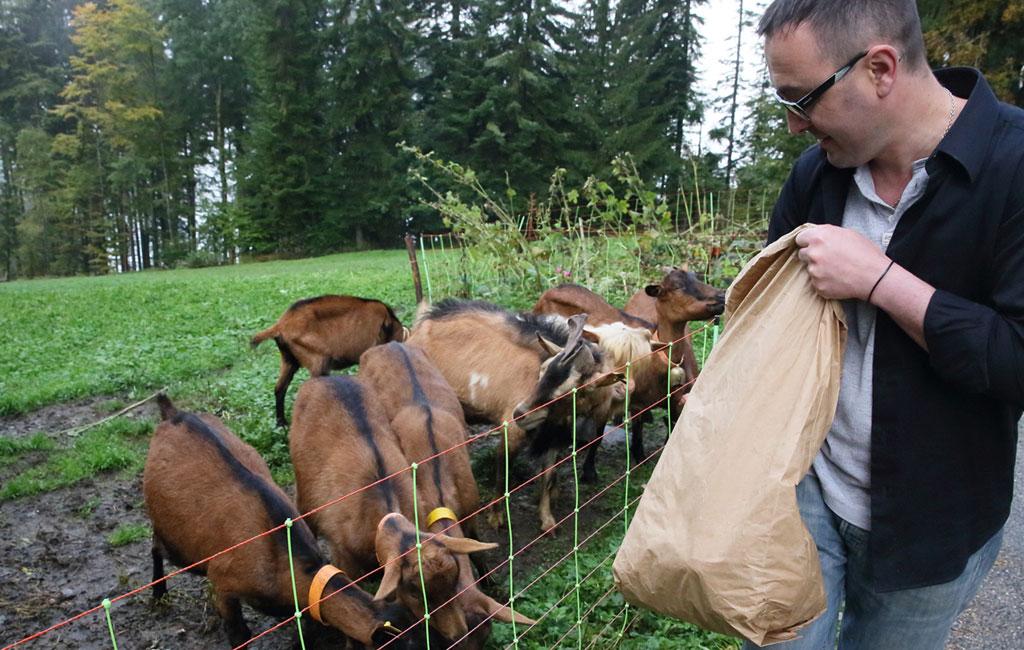 Stéphane Pilot et ses chèvres
