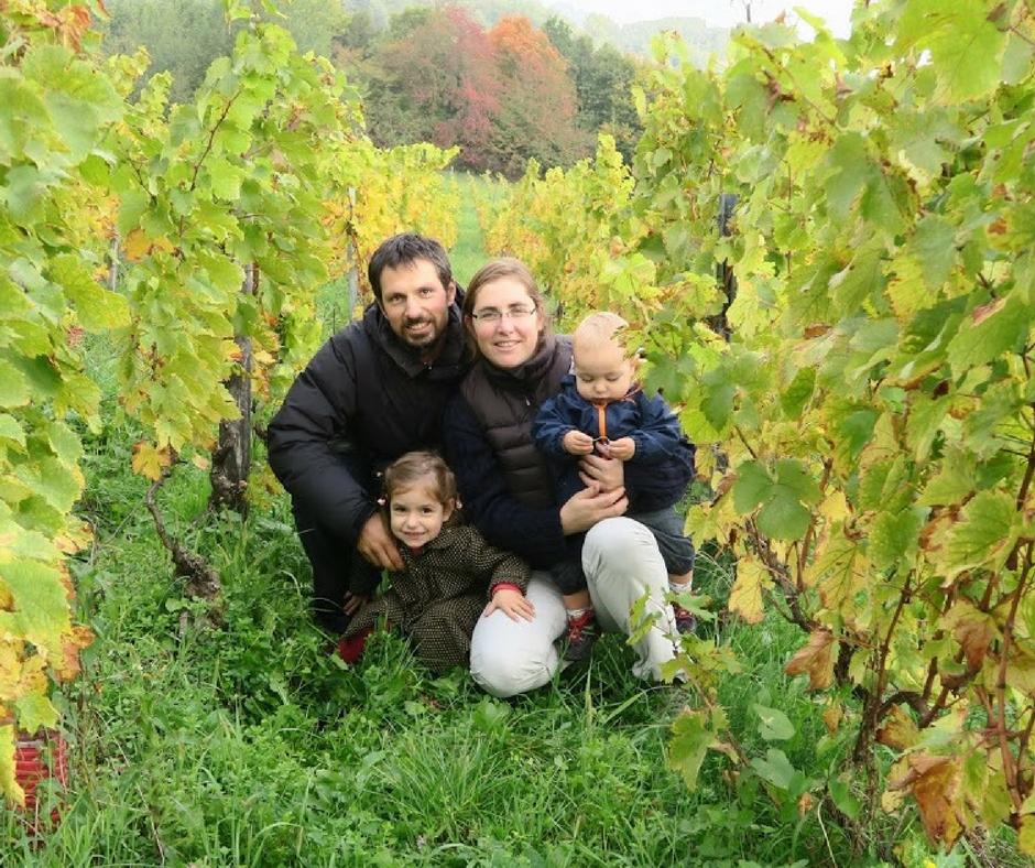 vins cavagna apremont
