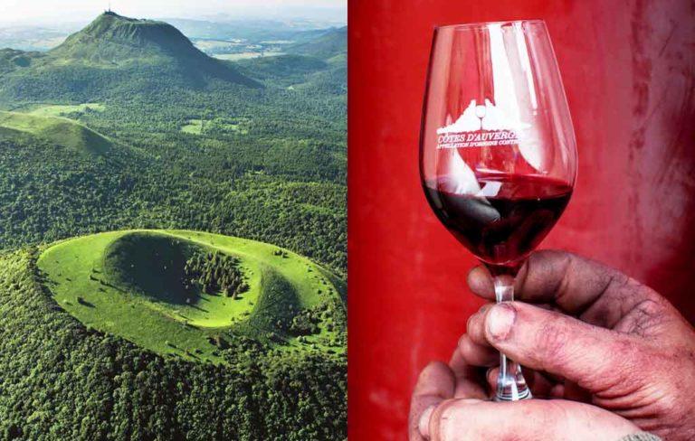 Les vins volcaniques de l'AOC Côtes d'Auvergne