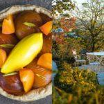 Le Cortil, un jardin extraordinaire