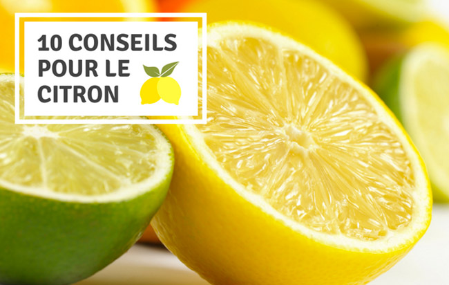 10 conseils pour le citron : savoir choisir, conserver et cuisiner le citron !